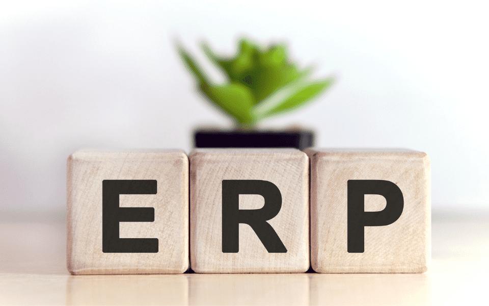 Sistemas ERP para aplicar cadena de valor