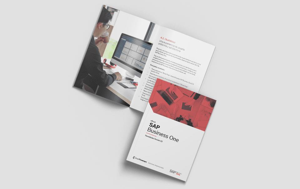Muestra del eBook SAP Business One Novedades Versión 10